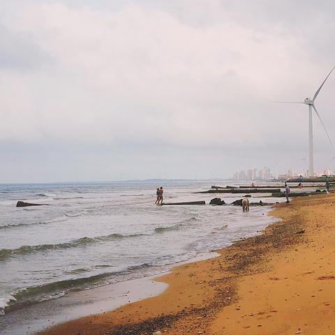 那年夏天 宁静的海