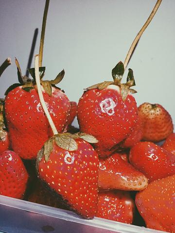 草莓,让你高潮迭起