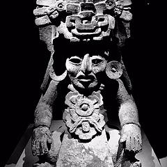 编号:11092018  《自然的力量》  古代玛雅文化展/深圳博物馆