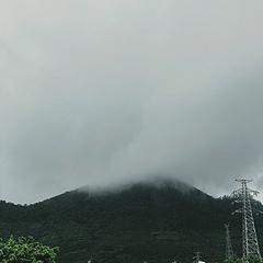 Belight Cam | 滤镜:Bali 对比度+40 亮度-20 曲线:〰️  六月二十五·记