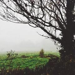 雾天之能见度二十米