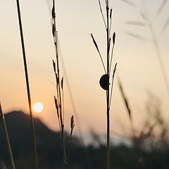 日落西山时