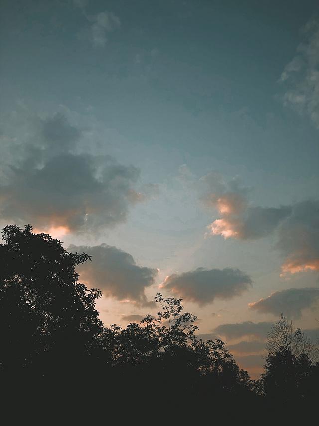 水母一样的云