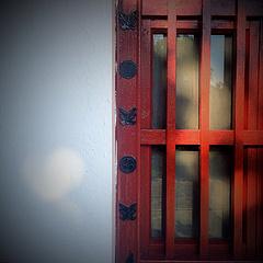 窗台上没有长颈鹿。🐱