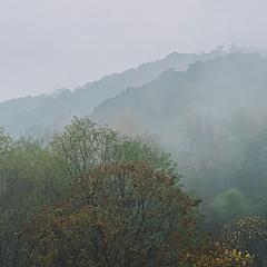 雾气蒙蒙细雨绵绵