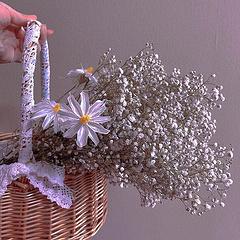 """""""手里能捧花吗"""" """"玫瑰可以吗"""" """"下次见有花吗"""" """"满天星可以吗"""""""